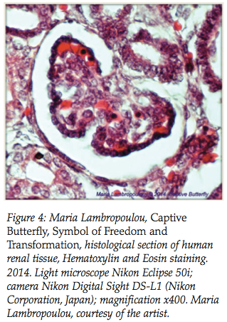 """Microscopy as a form of art"" by Avramouli A. et al. 2017"